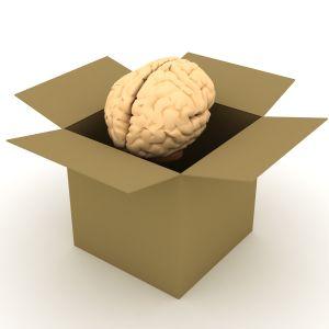 Brain Researchers find PTSD Marker
